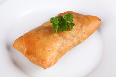 Spring roll. On a plate Royalty Free Stock Photos