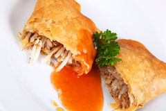 Spring roll. On a plate Stock Photography
