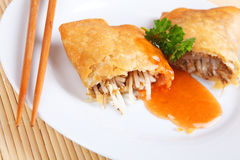 Spring roll. On a plate Stock Image