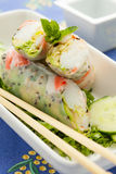 Spring roll with salad Royalty Free Stock Photos