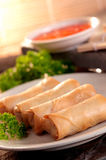 Spring roll and samosas. Delicious serving of egg spring roll stock image