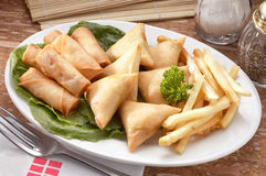 Spring roll and samosas Royalty Free Stock Photo