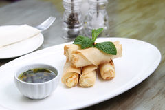 Spring roll with sauce Royalty Free Stock Image