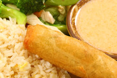 Spring Roll on Snow Pea Chicken Thai Food Royalty Free Stock Photography
