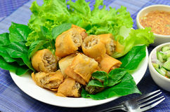 Spring roll traditional Royalty Free Stock Images
