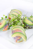 Spring roll wrapper with microgreens. Shot of spring roll wrapper with microgreens Royalty Free Stock Photography