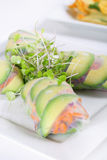Spring roll wrapper with microgreens vertical Stock Images