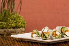 Spring rolls. Plate of Japanese spring rolls Stock Images