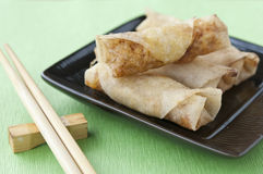 Spring rolls. In brown plate with chopstick on green background Stock Image