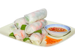 Free Spring Rolls Royalty Free Stock Photo - 19227225