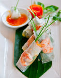 Spring Rolls. Fresh spring rolls with garnish and dipping sauce Royalty Free Stock Photo