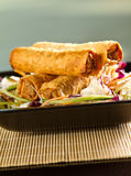 Spring Rolls Stock Photography