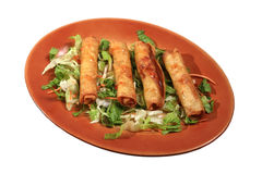 Spring rolls. Served with lettuce on a plate isolated Royalty Free Stock Photo