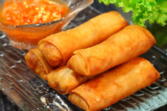Spring rolls. On clear dish Stock Image