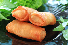Spring rolls. Close up of crispy Spring rolls on dish Stock Image