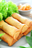 Spring rolls. Crispy spring rolls on dish with vegetable Stock Photos