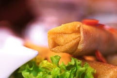 Spring rolls. Closeup of spring rolls, macro stock images