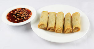 Spring rolls with chutney combo Stock Images