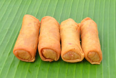 Spring Rolls. Stock Photos