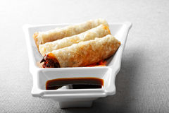 Spring rolls filled with vegetables Stock Images