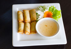 Spring rolls food Stock Image