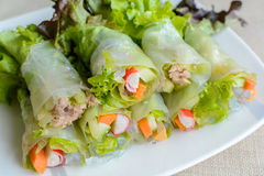 Spring rolls with fresh vegetable Royalty Free Stock Photo