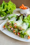 Spring rolls with fresh vegetable Royalty Free Stock Photography