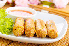 Spring rolls. Fresh spring rolls with vegetables on chinnese dishware Royalty Free Stock Photos