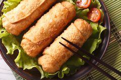 Spring rolls fried on lettuce with tomatoes horizontal top view Royalty Free Stock Photo