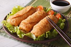 Spring rolls fried on a plate close-up and sauce. horizontal Royalty Free Stock Photos