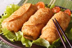 Spring rolls fried on a plate with lettuce and tomatoes Royalty Free Stock Photography