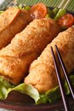 Spring rolls fried on a plate macro with lettuce and tomatoes Royalty Free Stock Images
