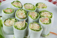 Spring rolls with mackerel and tuna fish, spicy sauce, vegetable Royalty Free Stock Images