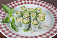 Spring rolls with mackerel and tuna fish, spicy sauce, vegetable Royalty Free Stock Photos