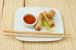 Spring rolls plate matt Royalty Free Stock Photography