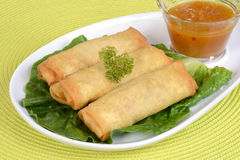 Spring rolls with plum sauce Stock Photography