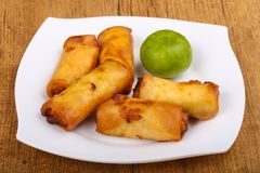 Spring roll. S with prawn and vegetables royalty free stock image