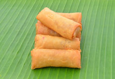 Spring Rolls. Royalty Free Stock Photography