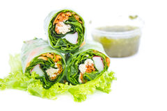 Spring rolls and salad vegetables Royalty Free Stock Photo