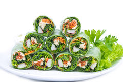 Spring rolls and salad vegetables Royalty Free Stock Photos