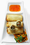 Spring rolls with sauce overhead Royalty Free Stock Photos
