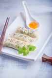 Spring Rolls with Sauce served on the plate.  Royalty Free Stock Image