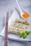 Spring Rolls with Sauce on a wooden surface.  Stock Photo