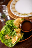 Spring rolls traditional with sauce Royalty Free Stock Photography