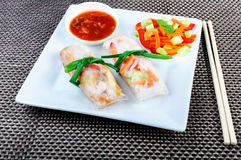 spring rolls with vegetables Royalty Free Stock Image