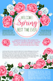 Spring rose flowers greeting poster template Royalty Free Stock Photos