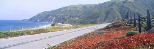 Spring, Route 1, California Coast Stock Images