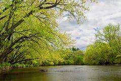 Spring, rum river Stock Photo
