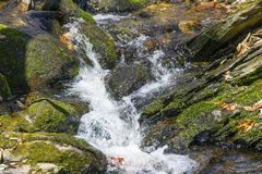 Spring run off. Water cascading over rocks in a small stream Royalty Free Stock Images