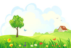 Spring rural day. Illustration of a rural spring day Royalty Free Stock Photography
